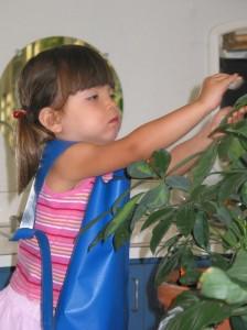 S'occuper des plantes.