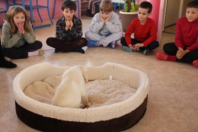 Montessori le respect