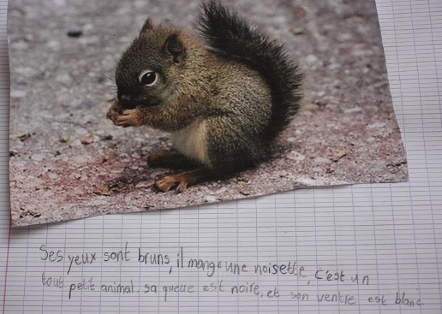 montessori creative writing