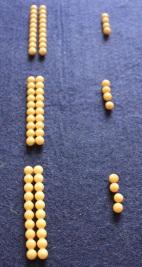 Montessori les perles dorées