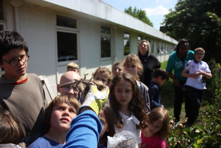 Montessori enfants autistes