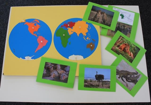 Le planisphère avec les images des animaux de l'Afrique