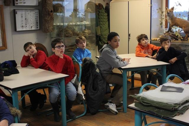 Montessori concentration